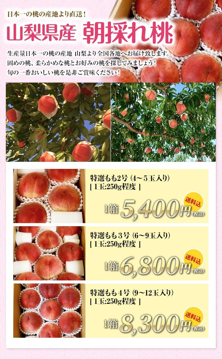 【日本一の桃の産地より直送!】特選もも ★送料込★ ★送料込★