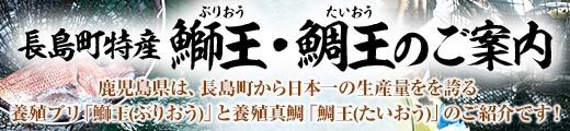 """""""【鹿児島県"""