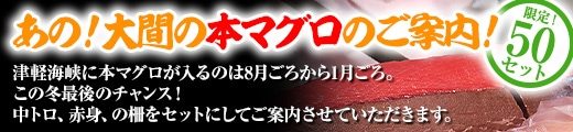 【あの!大間の本マグロ!!】大間の本マグロ・中トロ&赤身セット各200g柵 ★送料込★