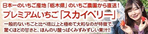 """""""【日本一のいちご産地"""