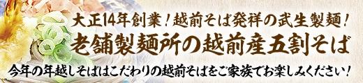 大正14年創業!福井県は越前そば発祥の地。武生製麺の年越そば ★送料無料★