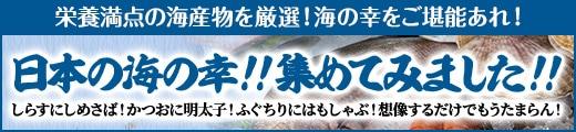 """""""【日本の海の幸!!集めてみました!!!"""""""