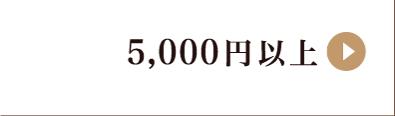 5,000円以上