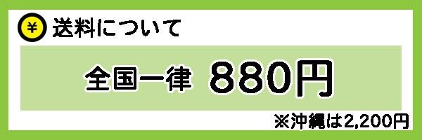 送料は全国一律880円※沖縄は2,200円