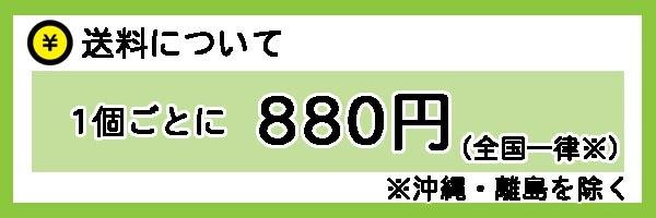 送料は1個ごとに全国一律880円※沖縄・離島を除く