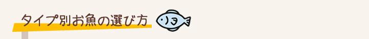 魚嫌い 克服 子供 対策 解決