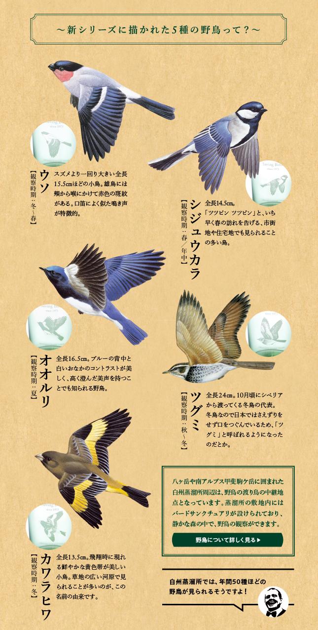 5種の野鳥 ウソ、シジュウカラ、オオルリ、ツグミ、カワラヒラ 白州蒸溜所