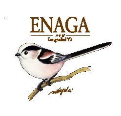 【2】エナガ