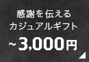感謝を伝えるカジュアルギフト〜3,000円