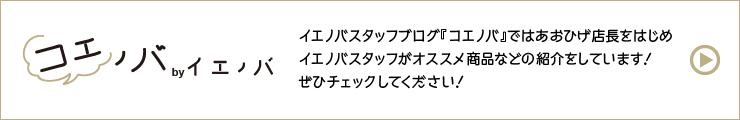 スタッフブログ「コエノバ」