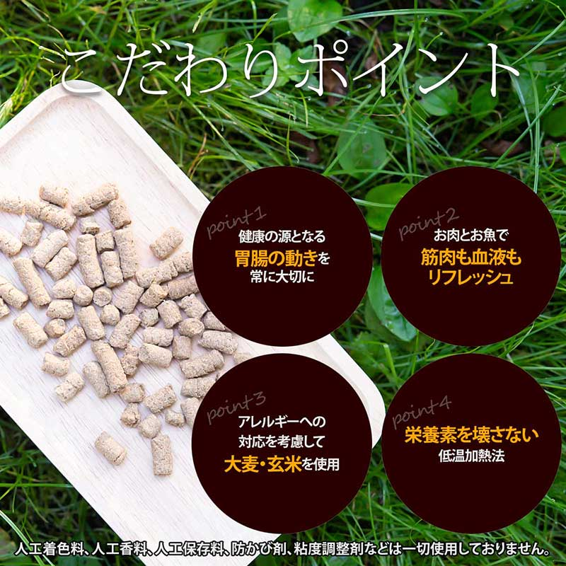 visions オリジナル ドッグフード ディー・ラム&フィッシュ【子羊肉&魚】[800g×5袋]    特徴