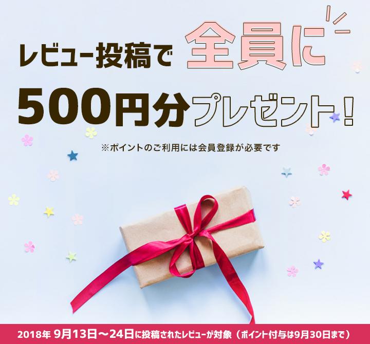レビュー投稿でポイント500円分プレゼントキャンペーン