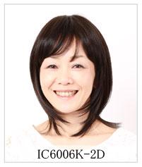 IC6006K-2D