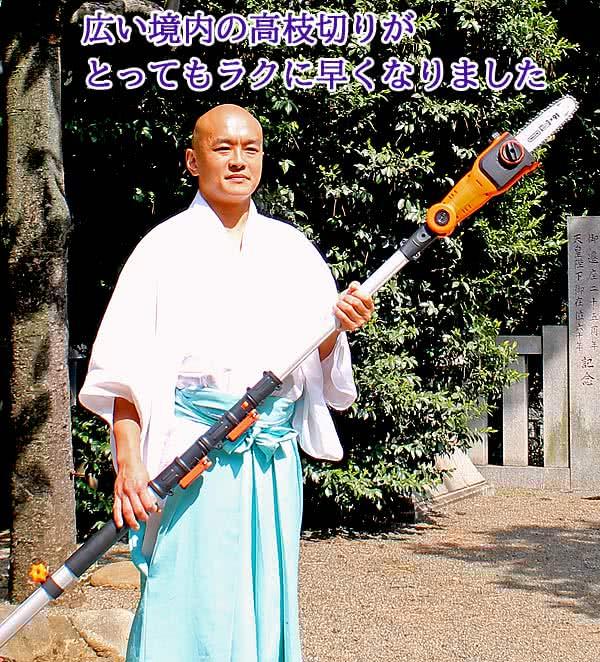 早稲田水稲荷神社で枝切り