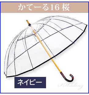 かてーる16桜NV