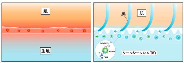 キシリトールが汗などの水分を吸収