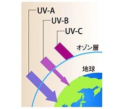 紫外線3種類