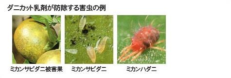 ダニカット乳剤が防除する害虫の例