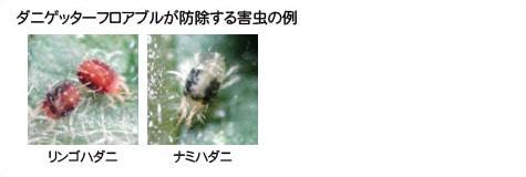 ダニゲッターフロアブルが防除する害虫の例