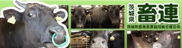 茨城県畜産農業協同組合連合会 名人和牛