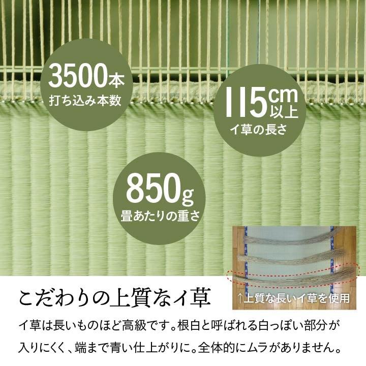 日本製 い草 上敷き カーペット 「 白浜 」江戸間1~8畳