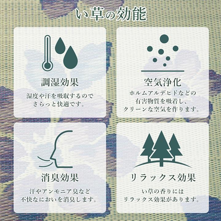 選べる9柄 い草ラグ