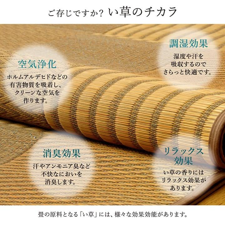 い草ラグ 「 DX京刺子 (裏不織布付き) 」ラグタイプ