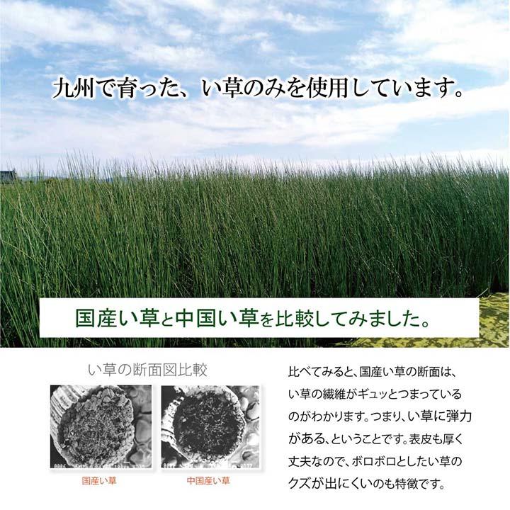 日本製 い草枕 低反発チップ「 侍 くぼみ平枕 」サイズ:約50×30cm