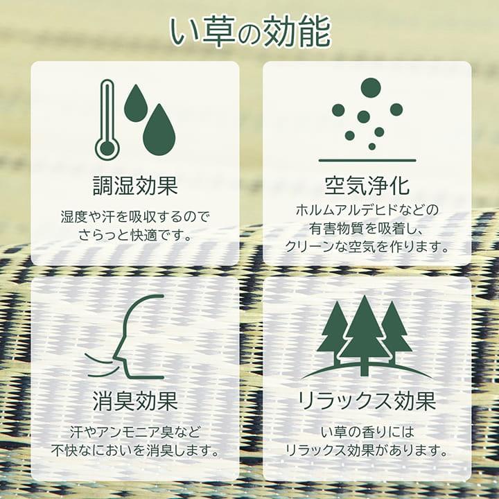 選べる17種類 い草ラグ