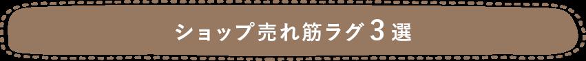 ショップ売れ筋ラグ3選