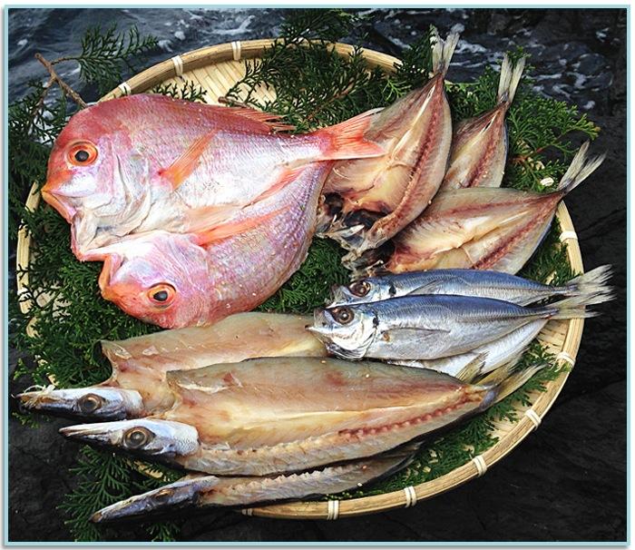 獲れたての新鮮な魚