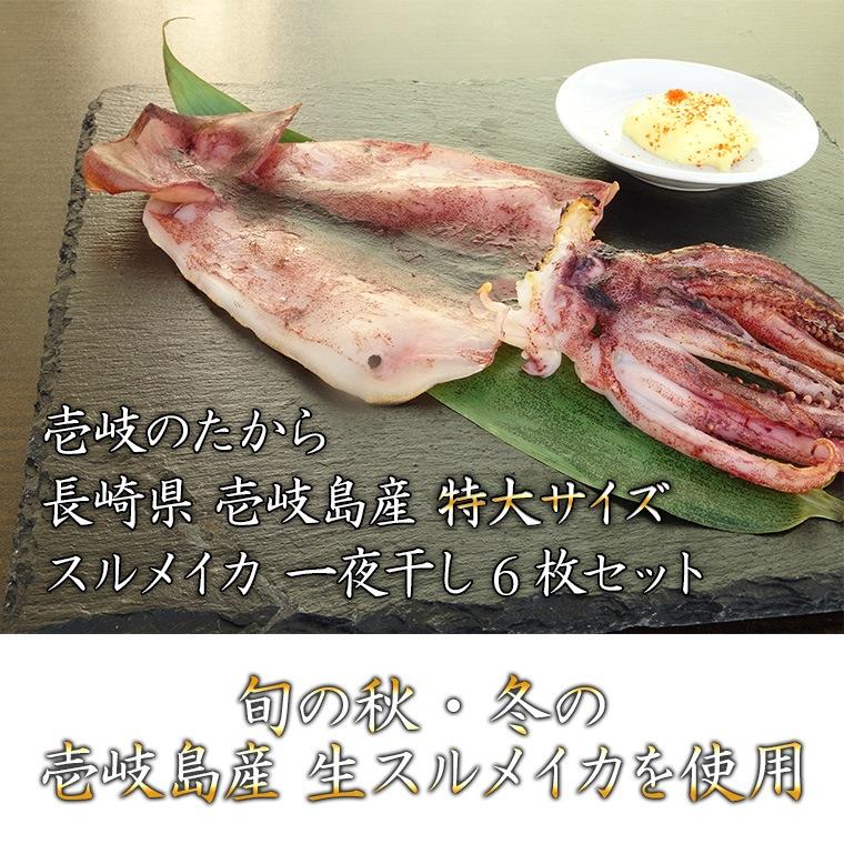 長崎県壱岐島産するめいか一夜干し 干物