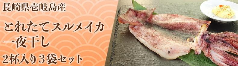 長崎県壱岐産 スルメイカの一夜干し3袋セット