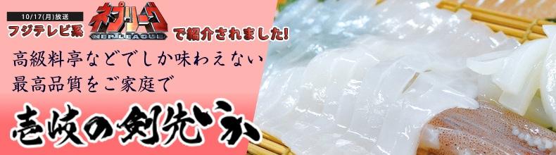 長崎県壱岐産 ケンサキイカ