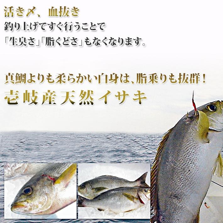 活き〆、血抜き、真鯛よりも柔らかい白身は、脂乗りも抜群!