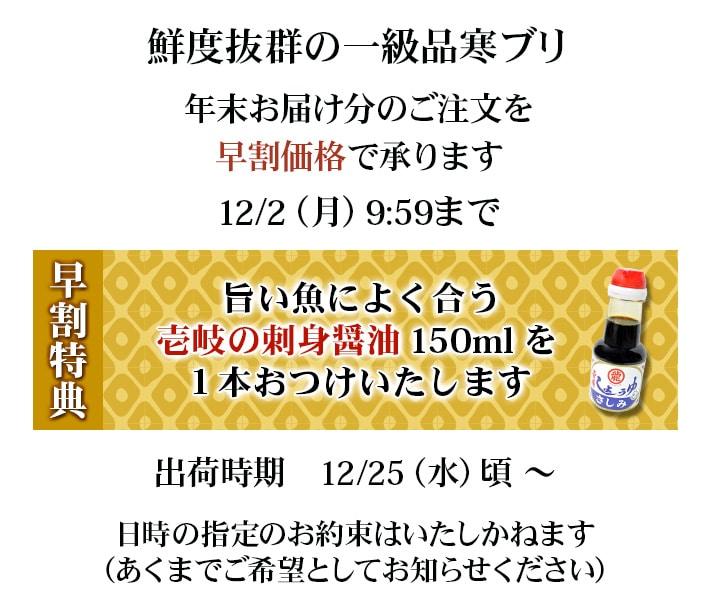 壱岐産 天然寒ブリ年末お届け分 早割特典 九州さしみ醤油プレゼント