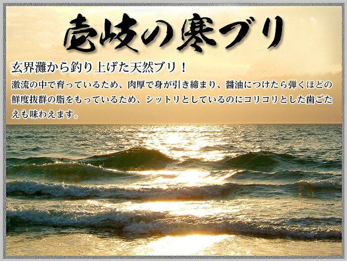 玄界灘から釣り上げた壱岐の天然寒ぶり