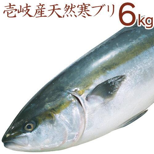 壱岐産天然寒ぶり6kg