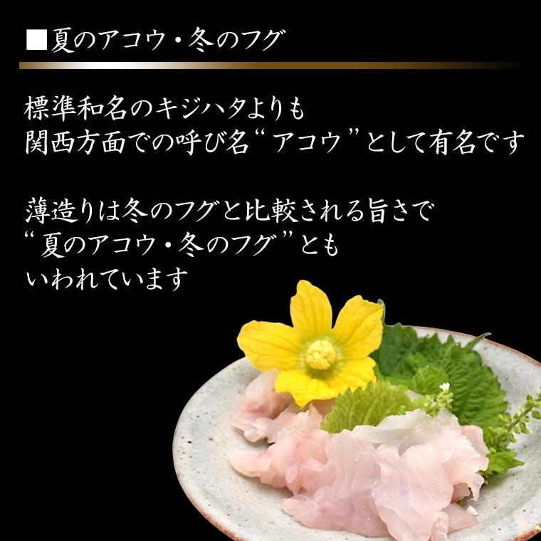 2 夏のアコウ 冬のフグと呼ばれるほどおいしい魚