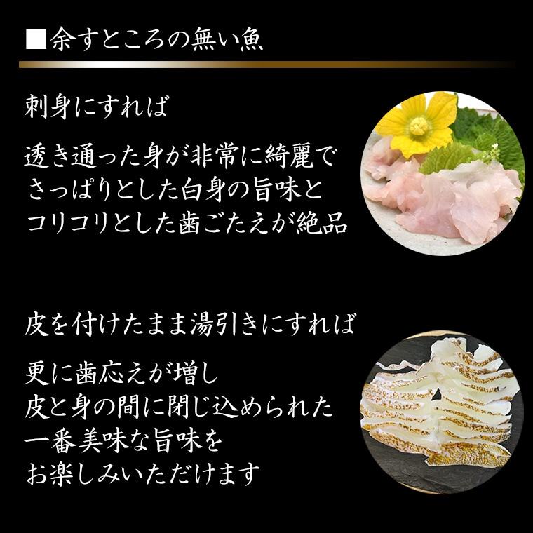 3 余すところのない魚 キジハタ 平づくりや薄切り 湯引きなどいろいろな刺身で食べたいキジハタ