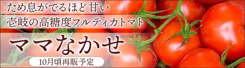 壱岐の甘いとまと 高糖度 高級完熟トマト 壱岐のしおかぜ