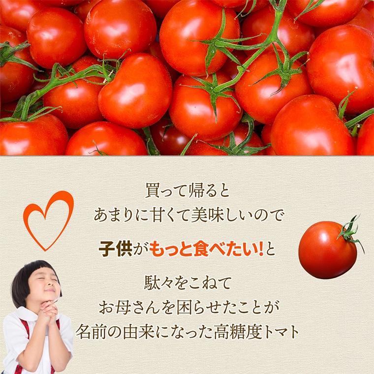 02 子供が喜ぶトマト