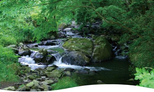 自然豊かな島根県産アルカリイオン水