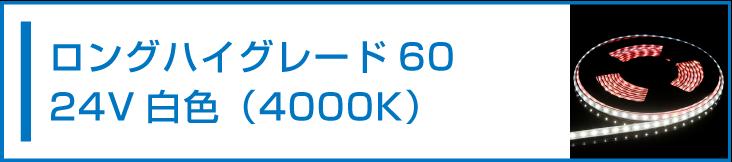 SMD2835(60) 24V LEDテープライト 白色 4000K
