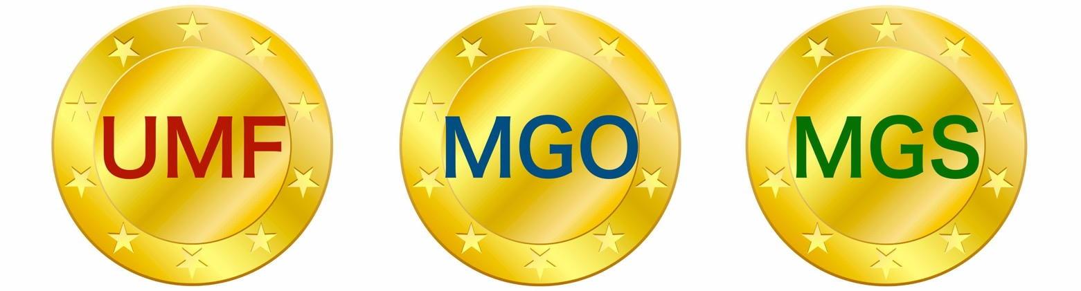 UMF、MGO、MGS評価内容
