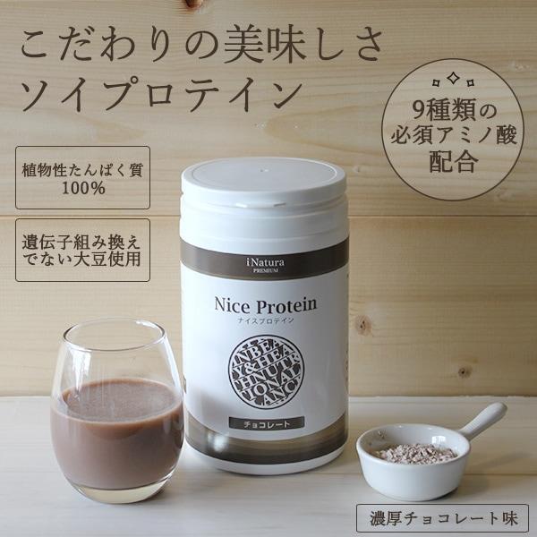 アイナチュラのナイスプロテインチョコレート