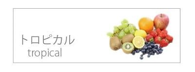 アイナチュラ社ナイスプロテインのトロピカル味