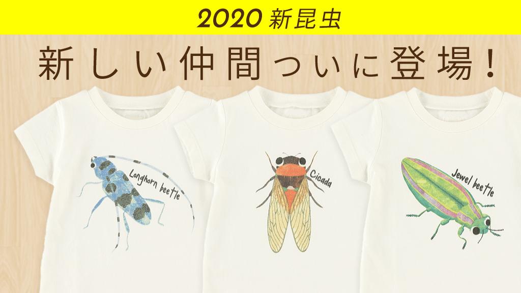 2020年新昆虫!ついに可愛くて新しい仲間登場!