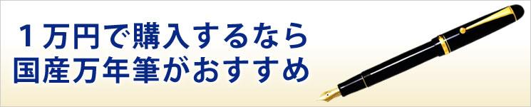 一万円で購入するなら国産万年筆がおすすめ