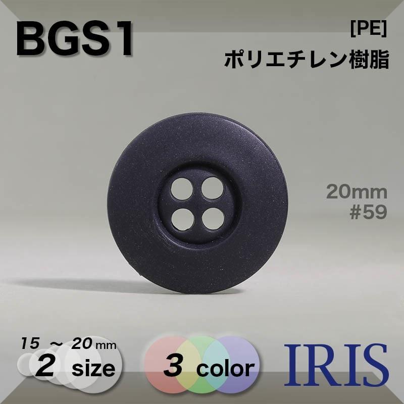 BGS2類似型番BGS1